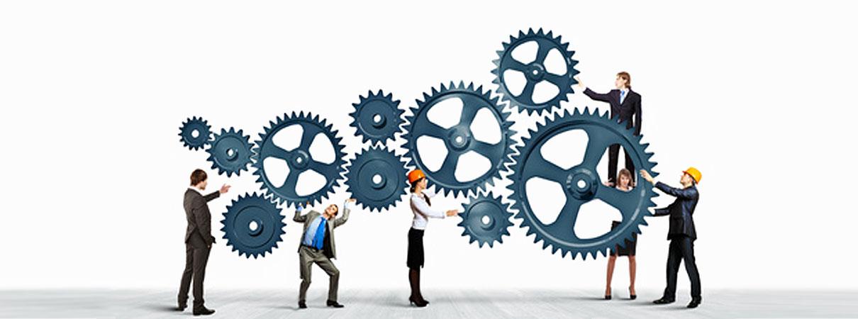 Team Building & Consulting